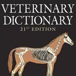 Equine Dictionaries