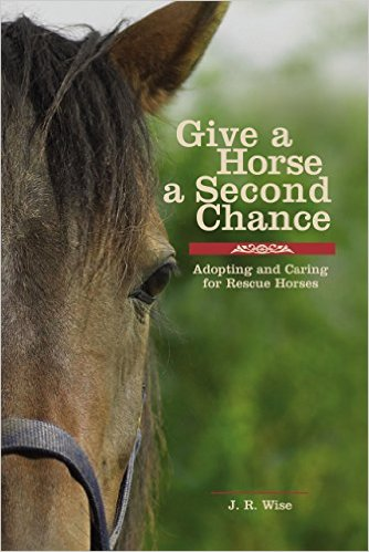 Give a horse a second chance [Hardback]