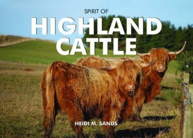 The Spirit of Highland Cattle